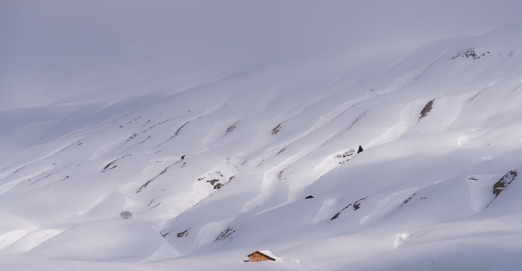 Dani Schwander - Vorarlberg